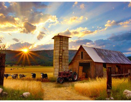 Sun Up To Sundown